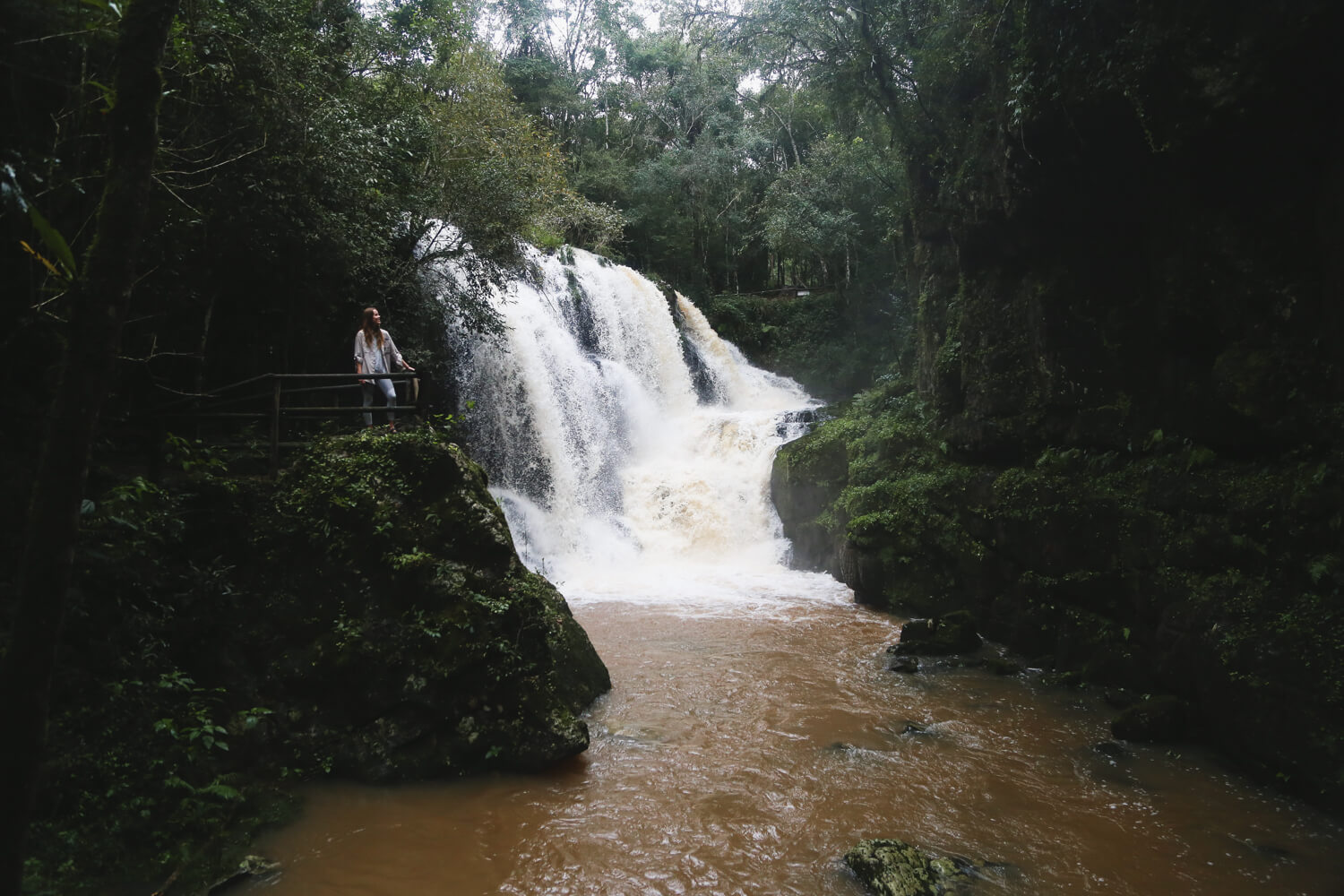A waterfall in the middle of a rain forest in Northeast Argentina MIsiones