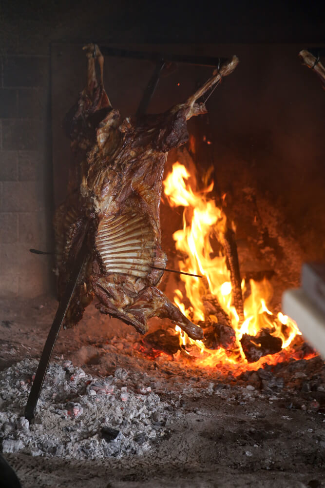 A lamb hanging on a metal spike is slowly cooking over a fire in El Calafate, Argentina
