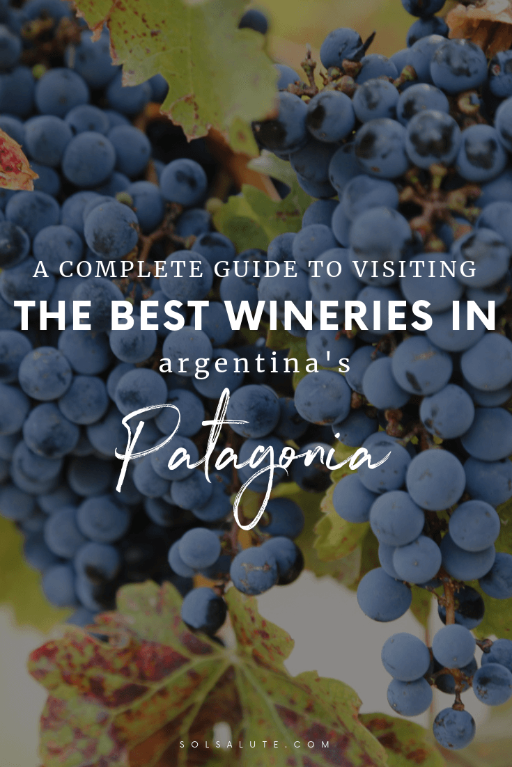 A complete guide to visiting the best wineries in Argentina's Patagonia including the ultimate list of the best Patagonia wineries, how to visit these Patagonia vineyards in this little known Argentina wine region, how to go wine tasting in Argentina in Neuquen. #Patagonia #Argentina #SouthAmerica