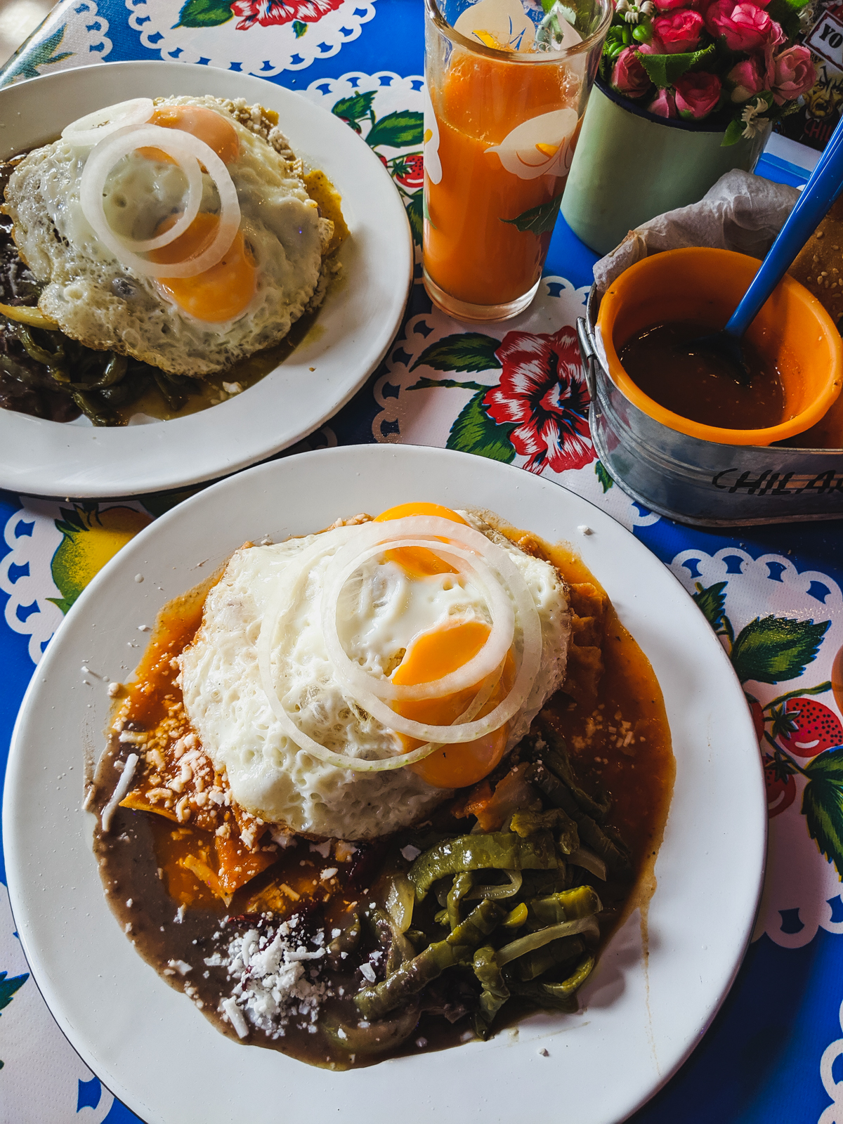 Two plates of the best Chilaquilas in Mexico City sit on a table covered with a floral table cloth