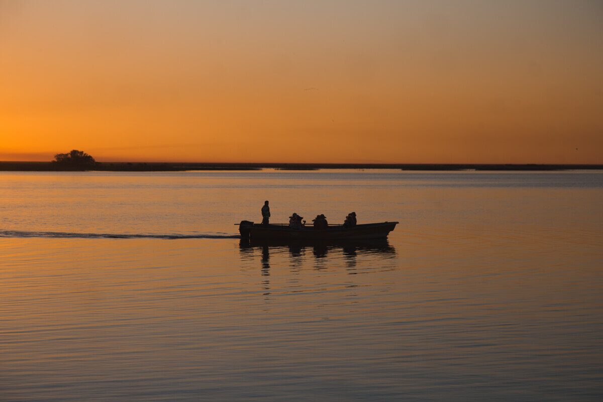 Las lanchas: The boat excursions at sunrise and sunset are the best way to experience Argentina's wetlands.