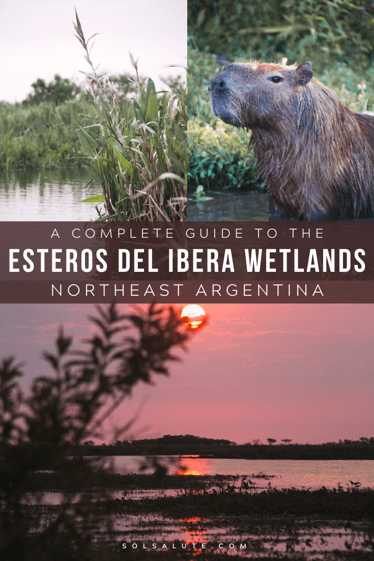 A complete practical guide to visiting Los Esteros del Ibera wetlands in Argentina | Argentina's wetlands | Esteros del Ibera Humedal | How to get to los Esteros del Ibera | How to get to Colonia Carlos Pellegrini | Where to stay in Los Esteros del Ibera accommodation | Best accommodation in Colonia Carlos Pellegrini | Best tours of the wetlands in Argentina | Excursiones Esteros del Ibera excursions #Argentina #EsterosdelIbera #Wetlands #SouthAmerica