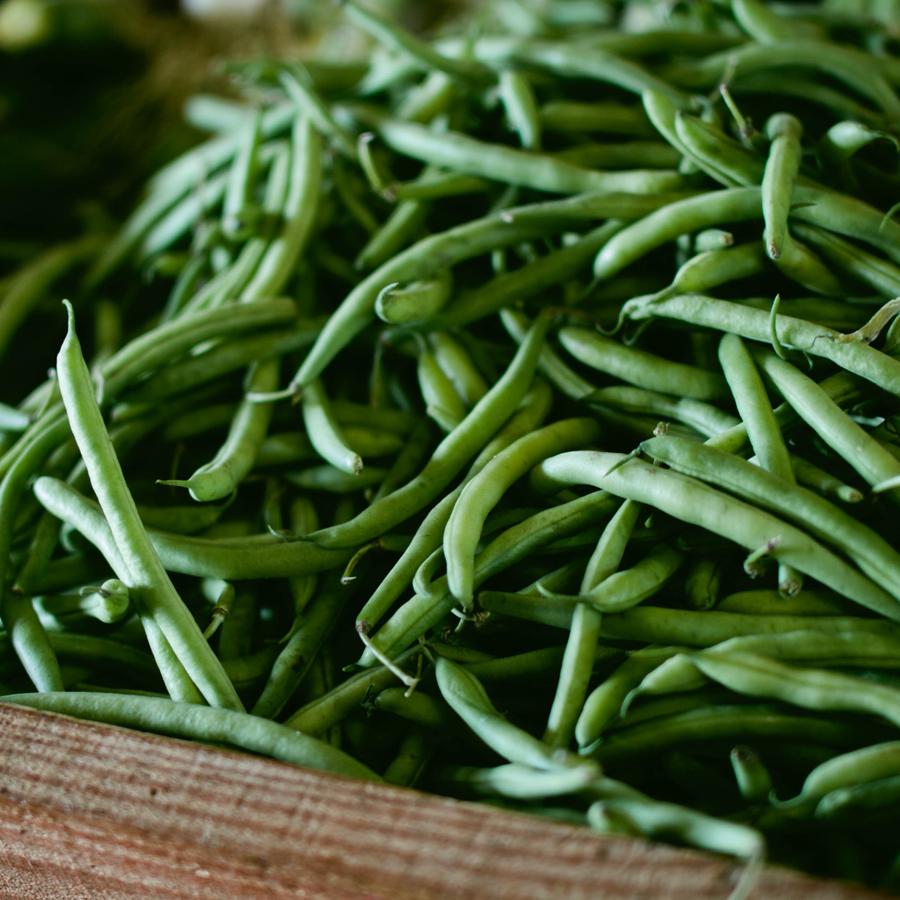 greenbeans.png