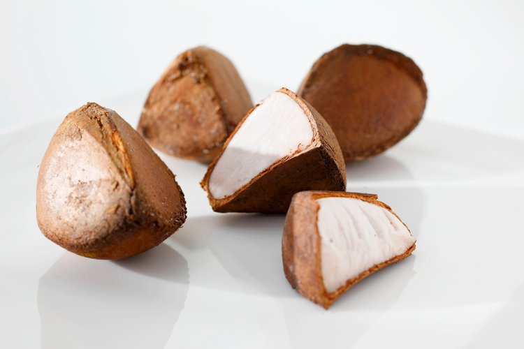 What is Andiroba? - The Andiroba tree is native to tropical South America. Extracts from its bark, flowers and fruits have been used for centuries by the Amazonian people as a source of prevention and treatment for a variety of ailments: arthritis, inflammation, skin disorders, fevers, flu and depression – just to name a few.