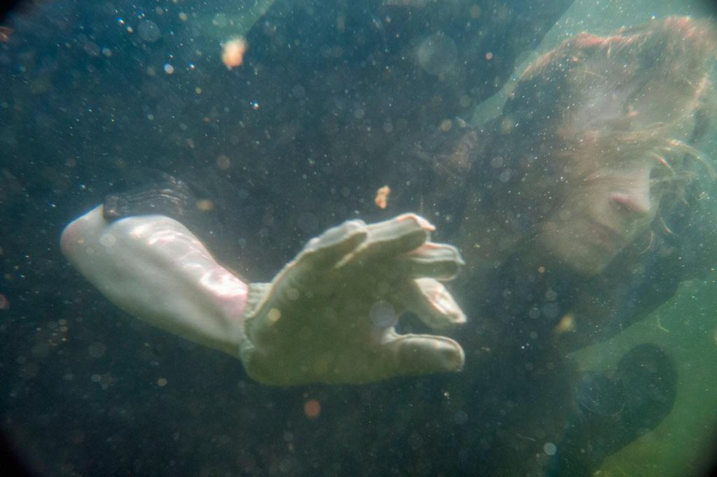 Albumen with White Glove