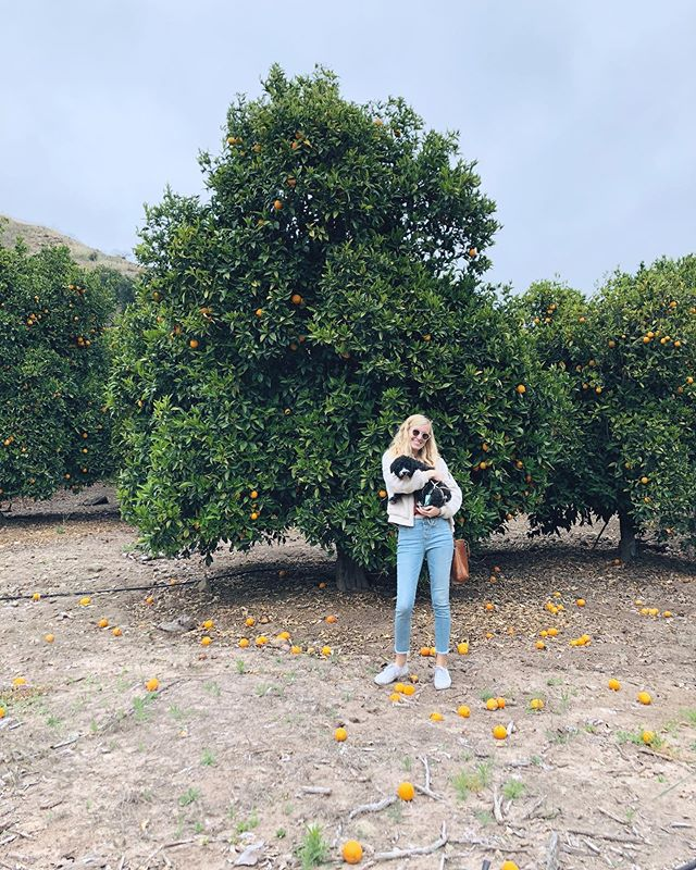 me and riggy and a tangerine tree 🍊