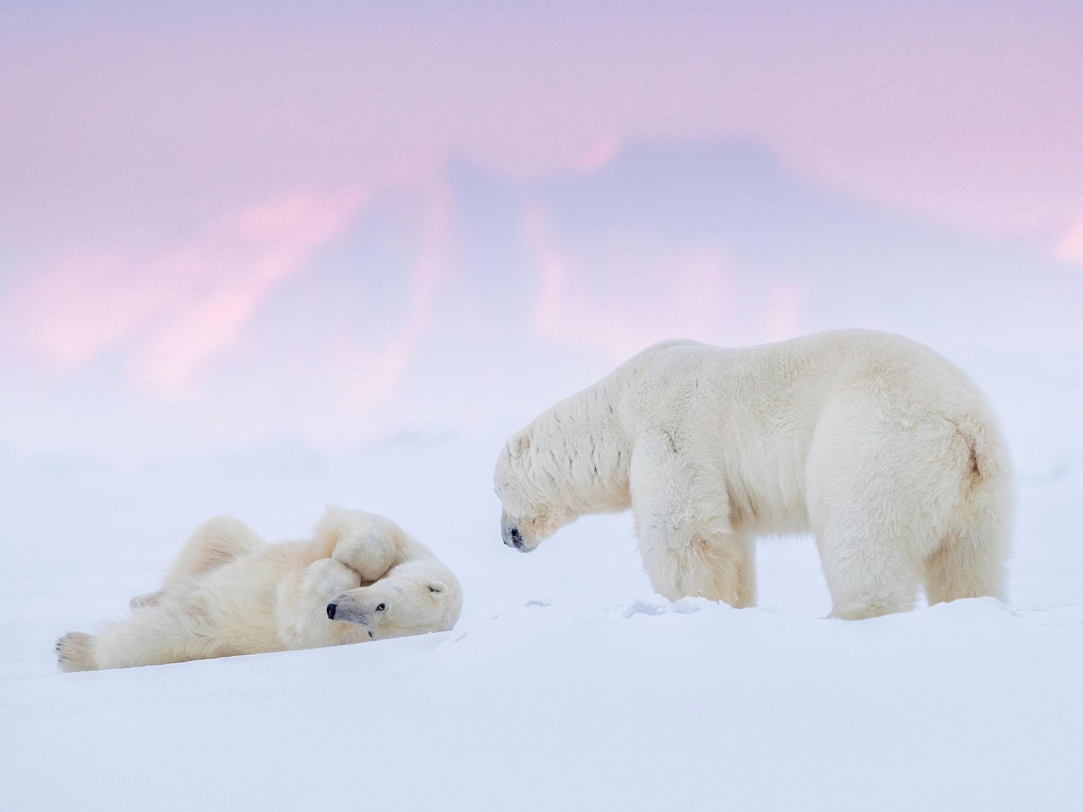 SvalbardWinter2017-16137-Edit-Print-MoabSMR-Perceptual.jpg