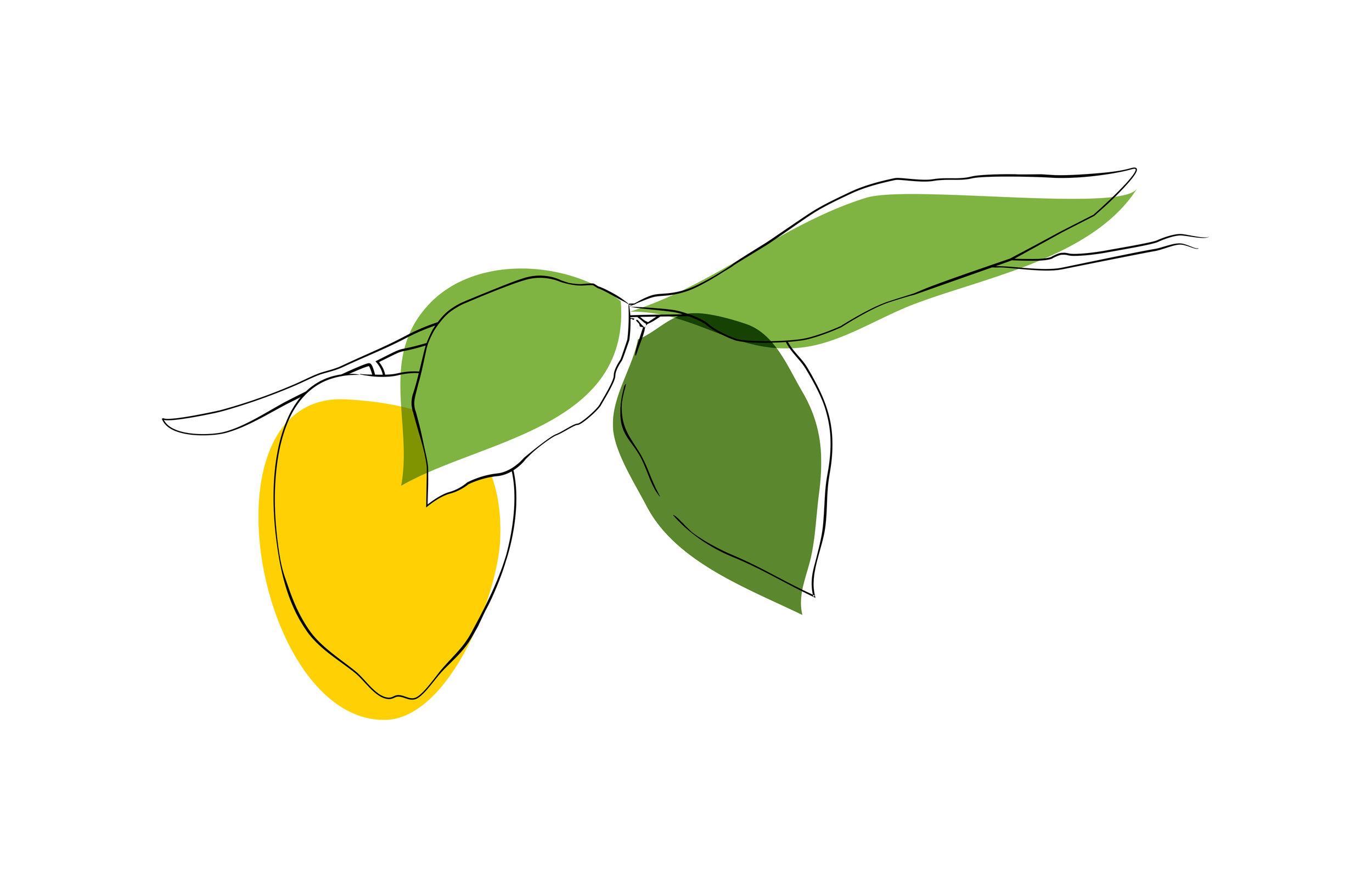 claire-lemon.jpg