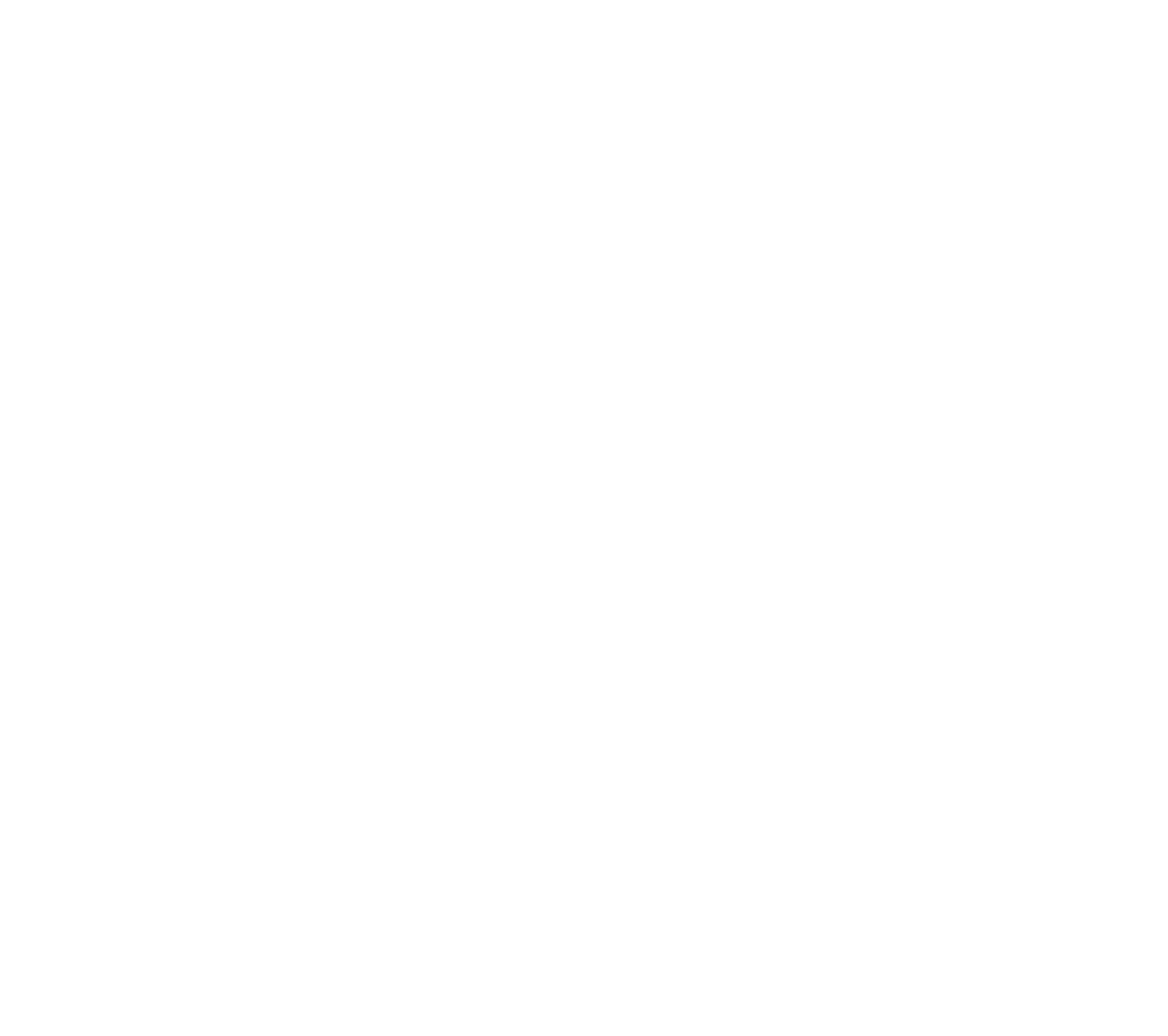 first-flight-air-co_logo_wh.png