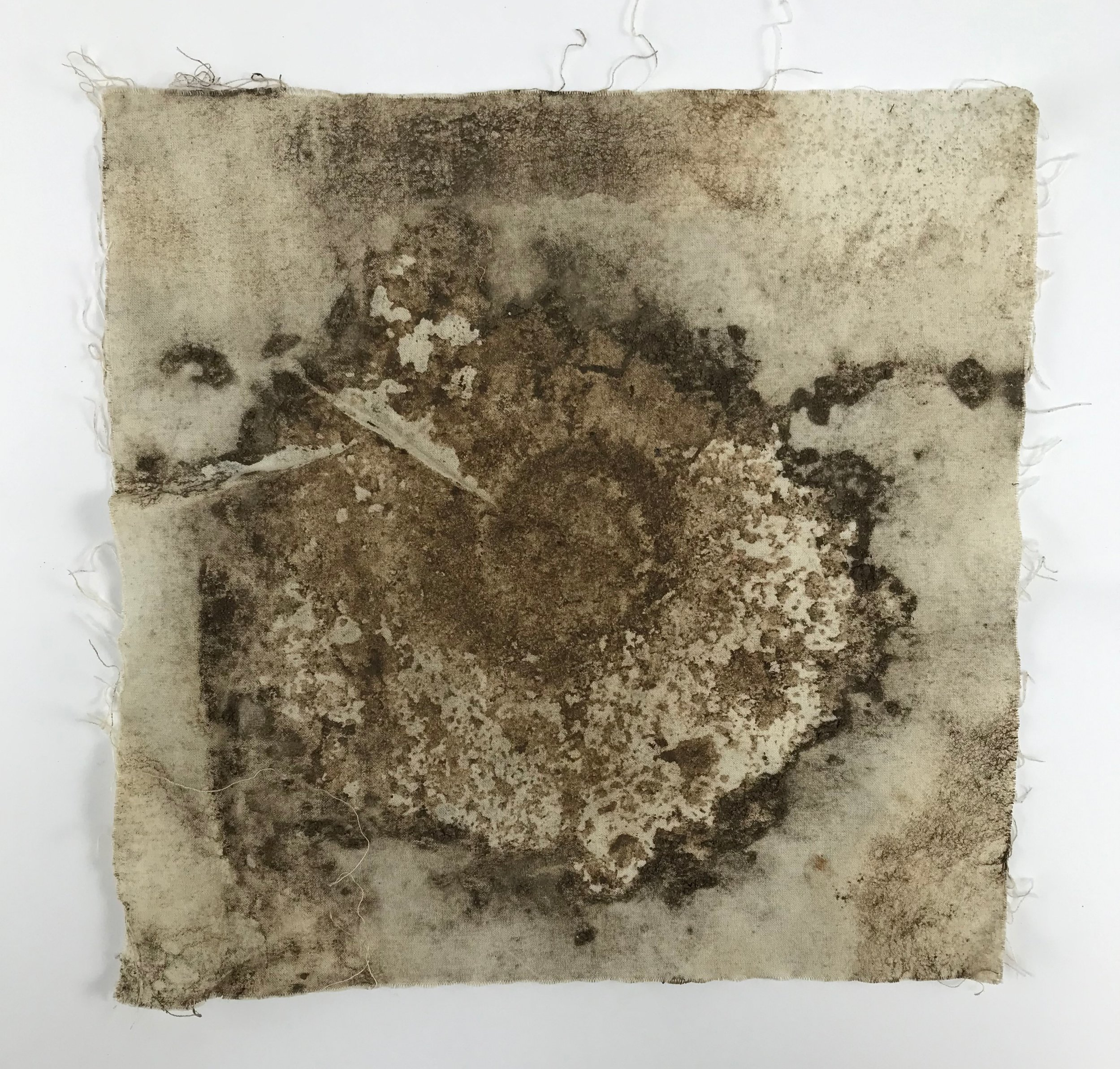 Image created from buried canvas and Ammonite fossil. Jacqueline Byrne.
