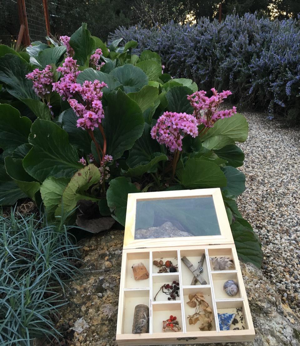 Jaqueline's 'Walk box' in Arminee's Garden. Image credit Arminée Chahbazian.
