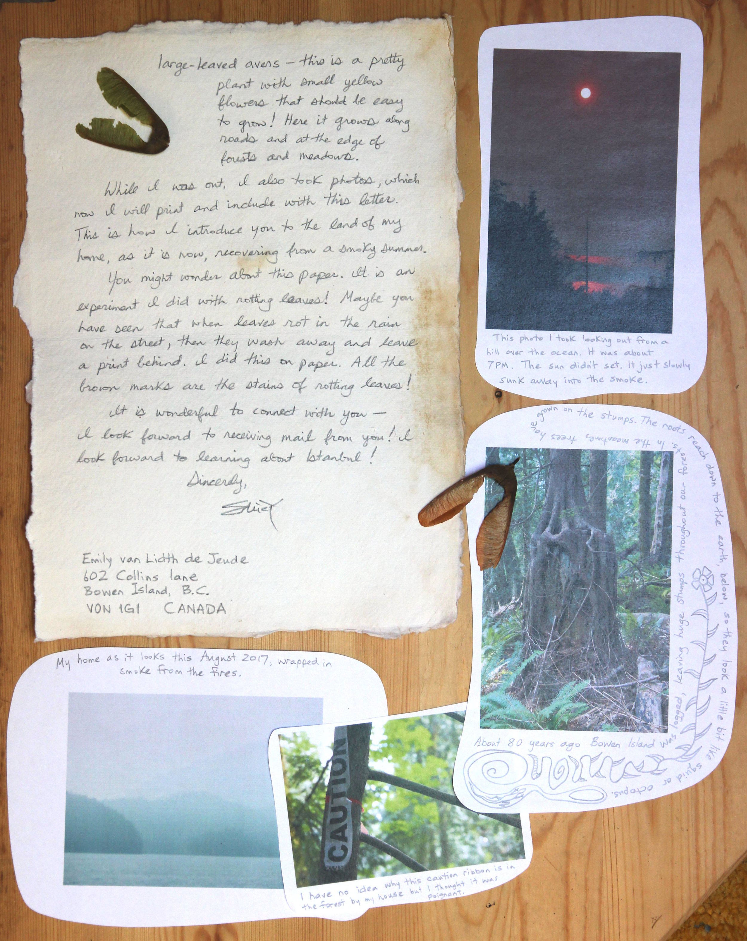 Documentation from the postal exchange between Emily Van Lidth De Jeude, Bowen Island BC and Fatma Kackmac in Istanbul..JPG