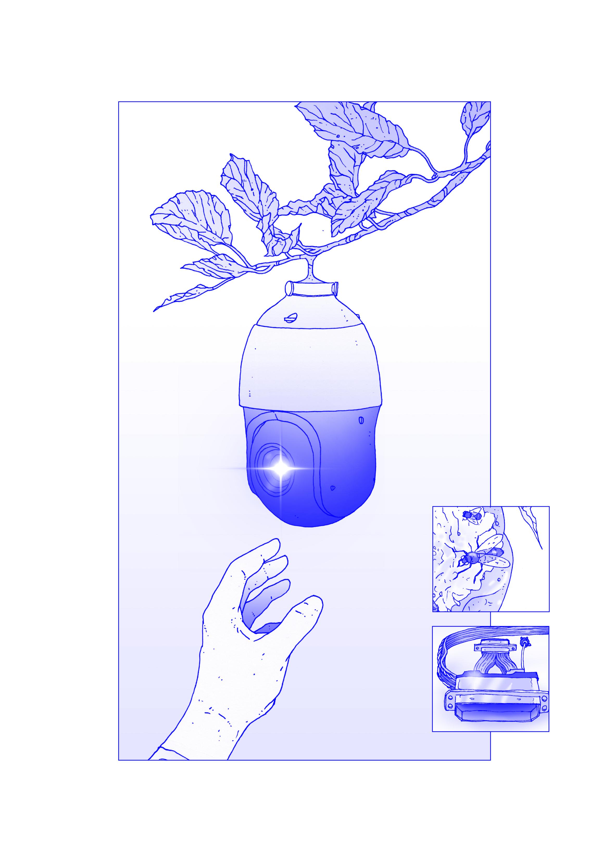 Sentinel Harvest-3.jpg