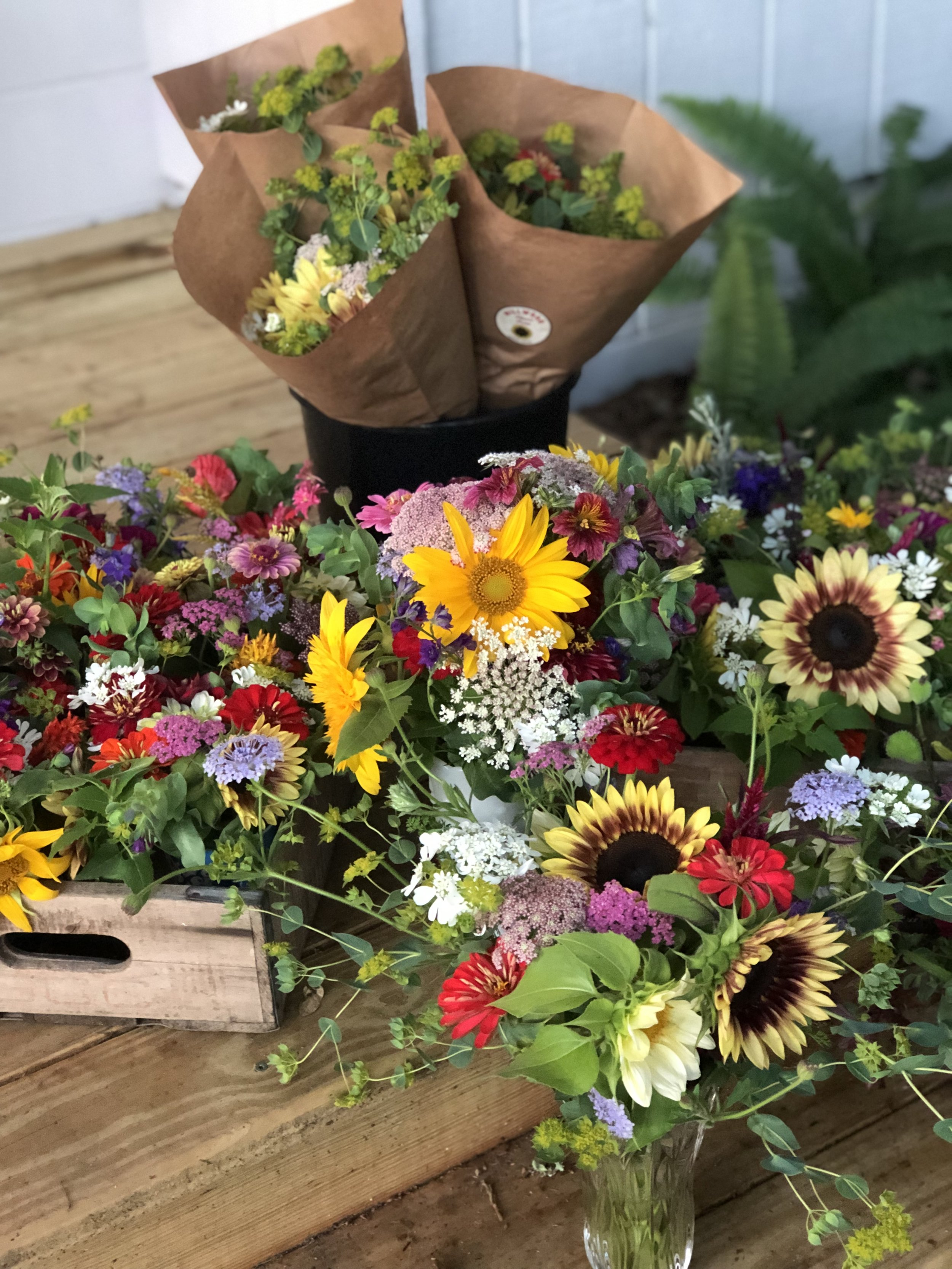 Weekly Bouquet - During our long Florida growing season, you can have a fresh bouquet picked just for you on a weekly, bi-weekly or monthly basis. Available October through May.