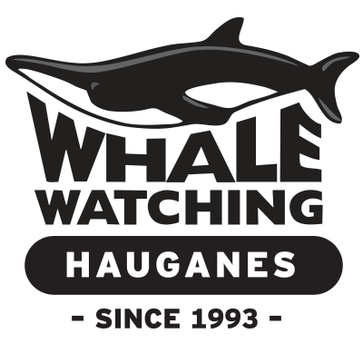 whale-logo-trans.png