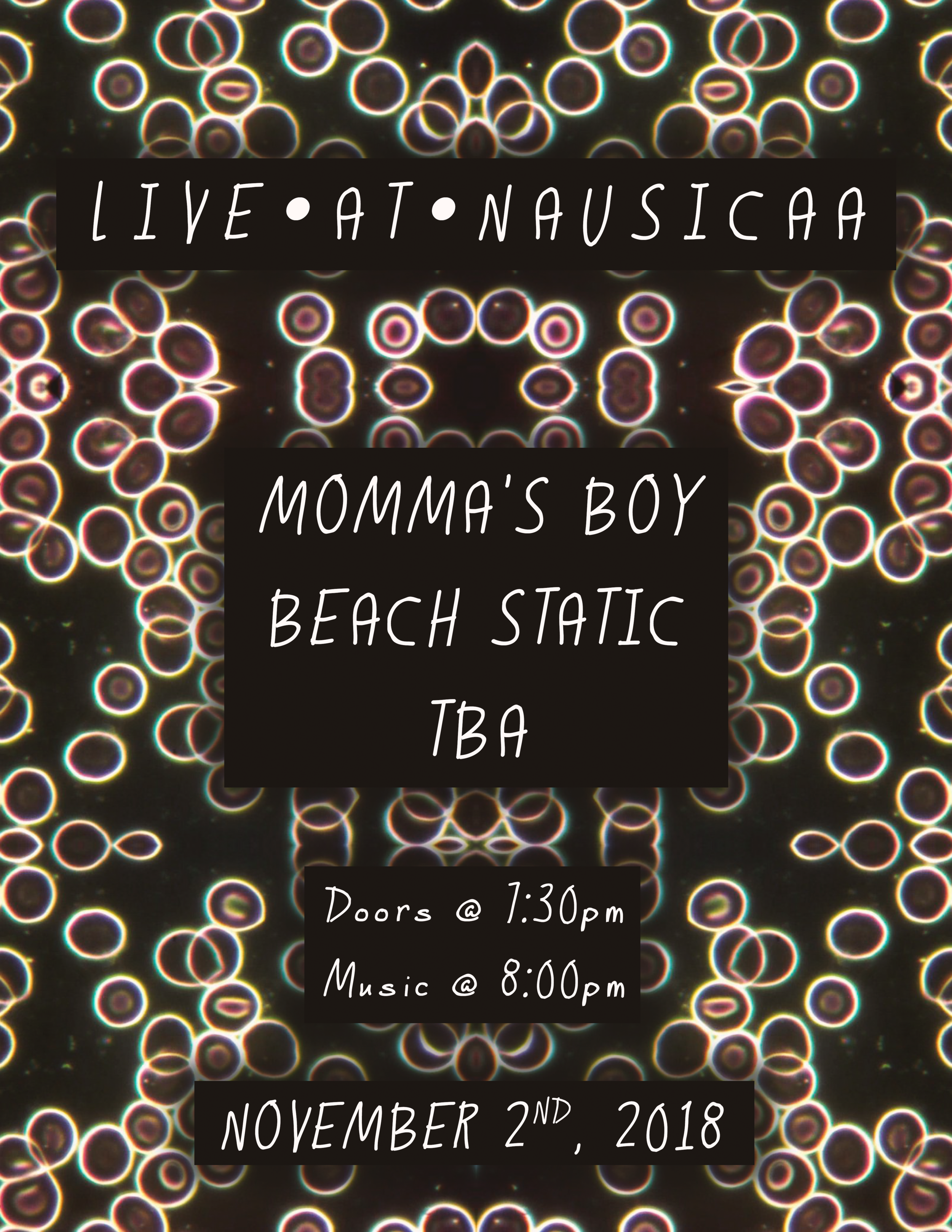 MOMMA'S BOY_BEACH STATIC_TBA_18_11_02 (smaller file size).png