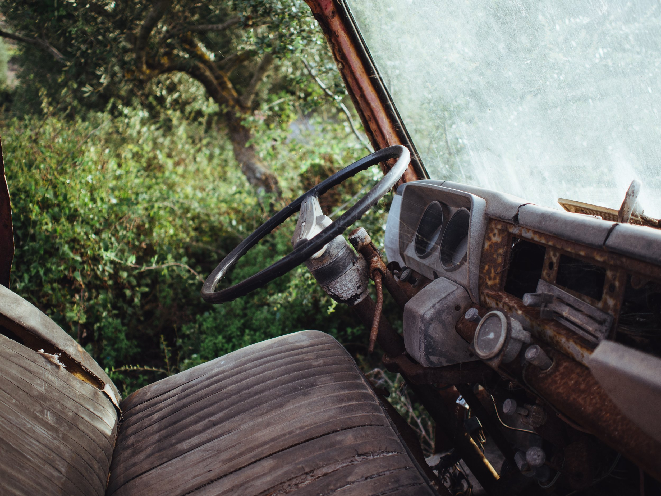 The driver's seat of an abandoned truck, with cobwebs and vines growing inside.