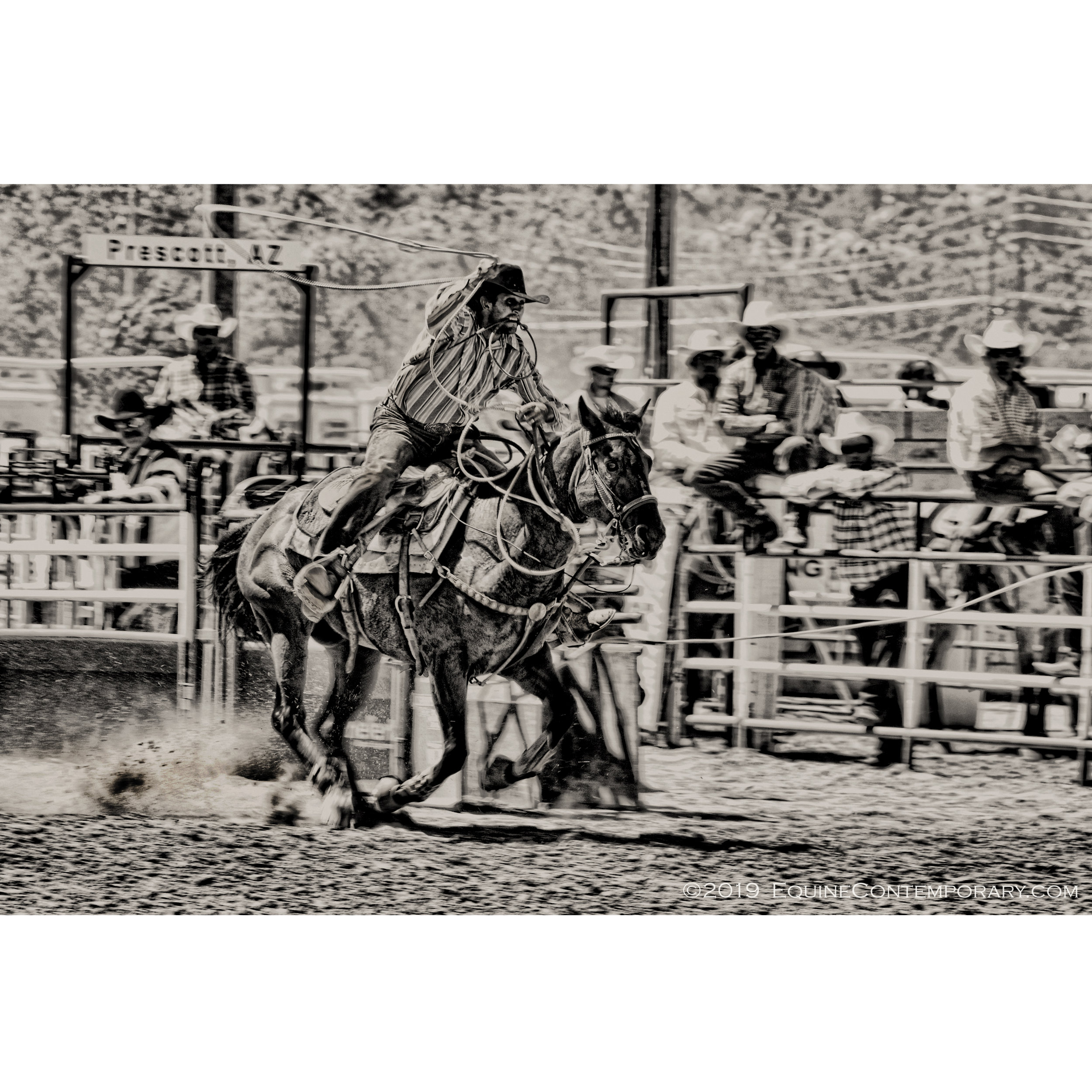 *****Square Roping Prescott WM.jpg
