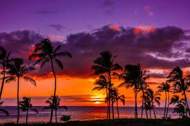 - Capture the Hawaiian Sunset at the Wyndham Bali Hai Villas