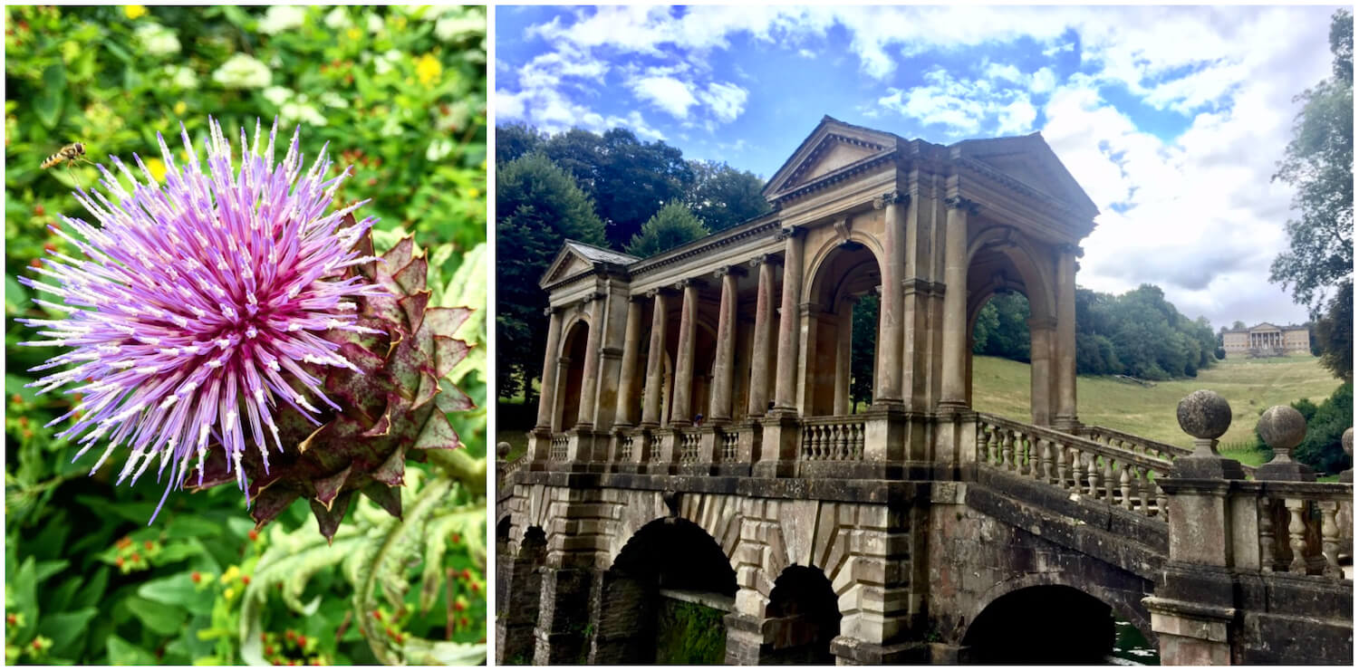 Bath, Somerset - Flower and Palladian Bridge in Prior Park
