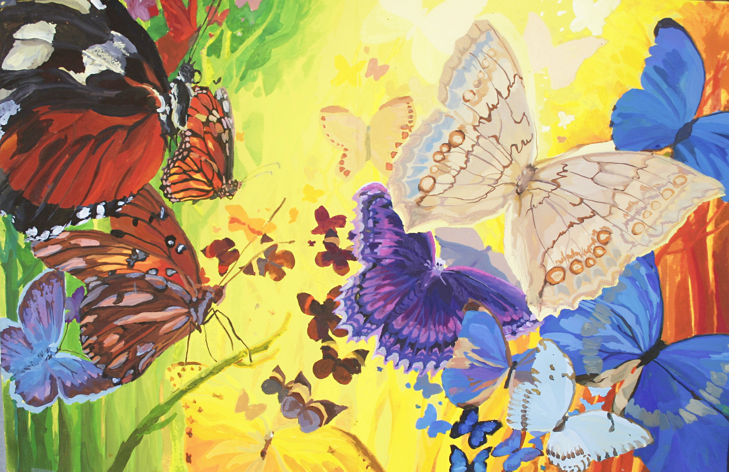 When_God_Made_Color_09_Butterflies_in_Forest for print.jpg