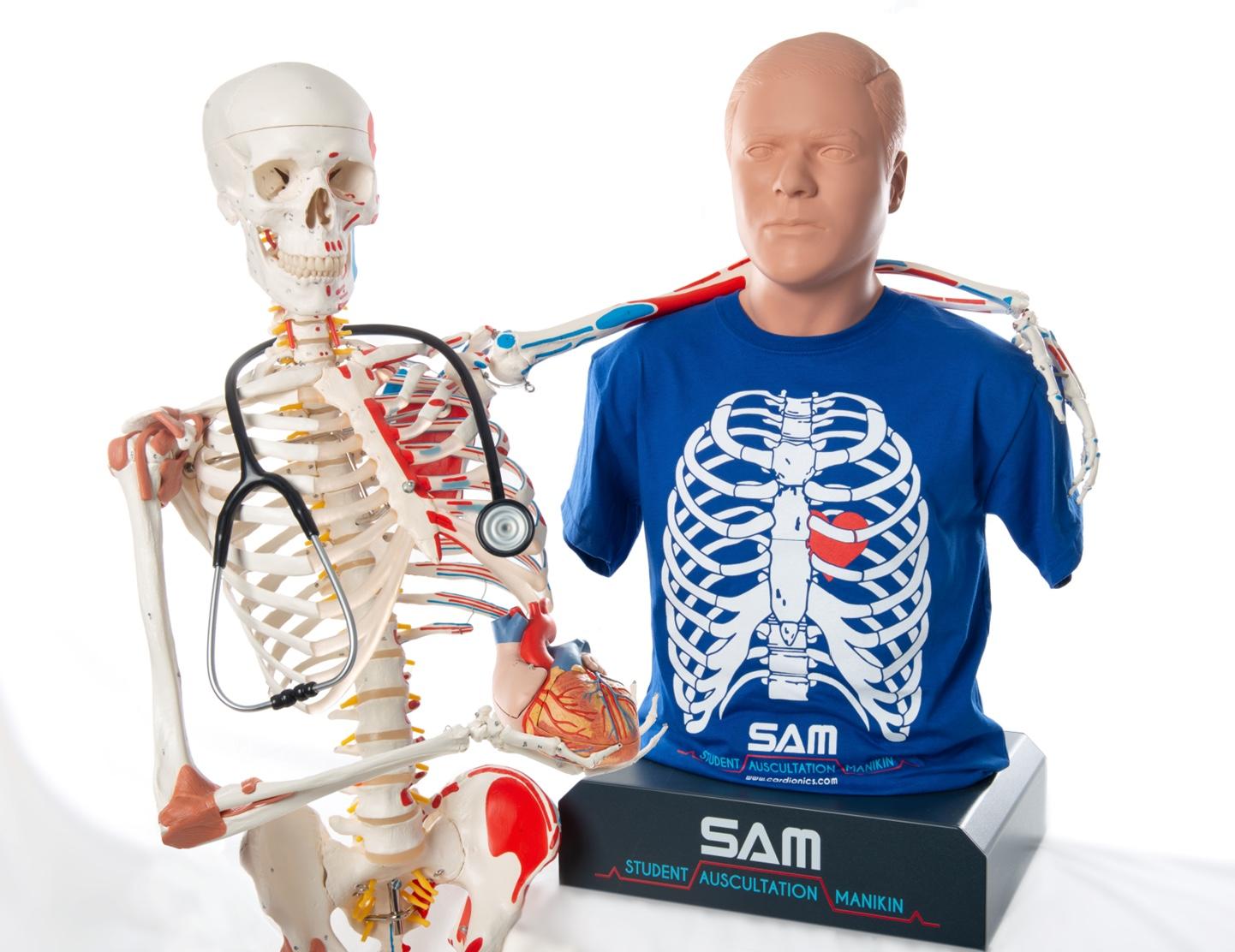 Breaking News:      3B Scientific acquires Cardionics!