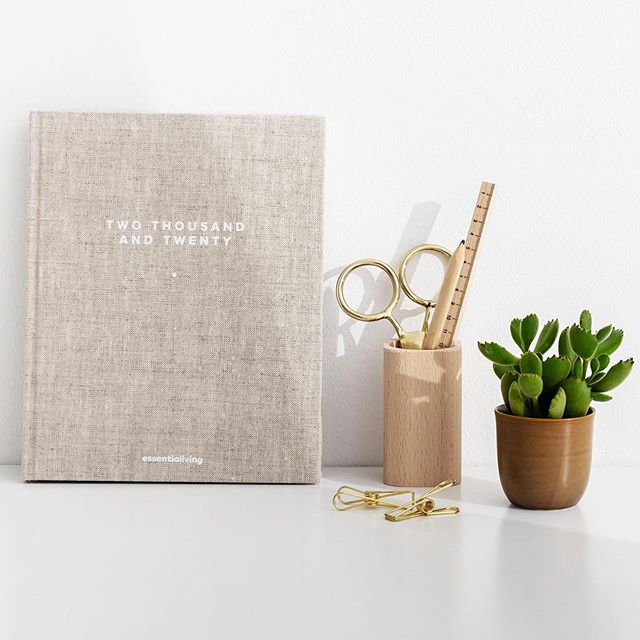 We are shopping for our 2020 Planners and fell in love with @golden.coil ✨