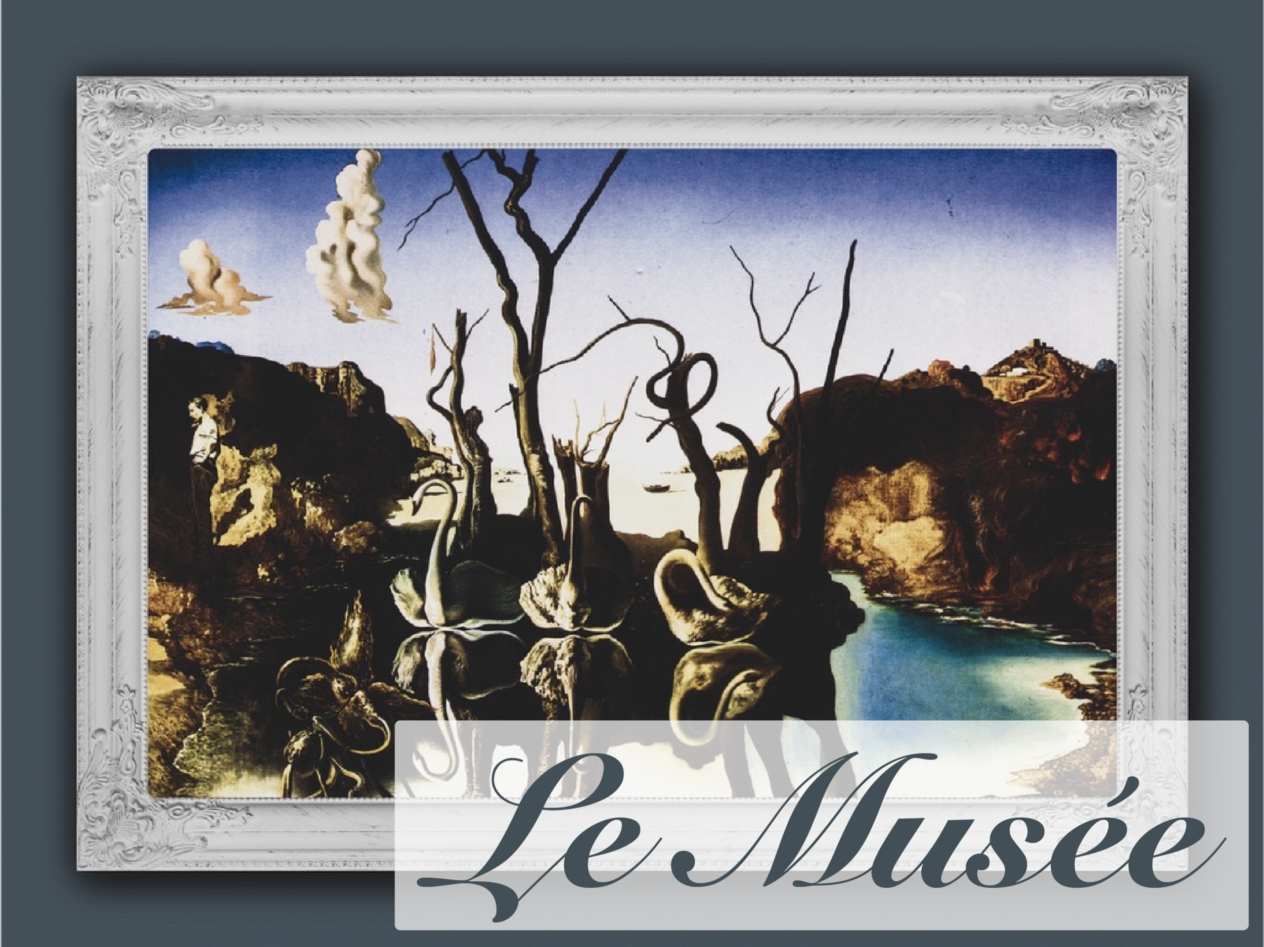 Le Musée Photo_Le Musée Photo.png
