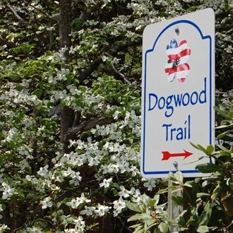 dogwoodtrail9(1).jpg