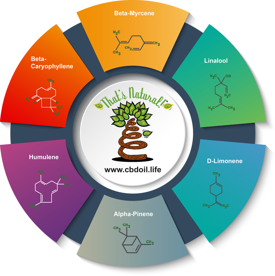 thats-natural-full-spectrum-cannabinoid-oil-terpenes-pie-chart_no-background-v2-no-verbiage.png