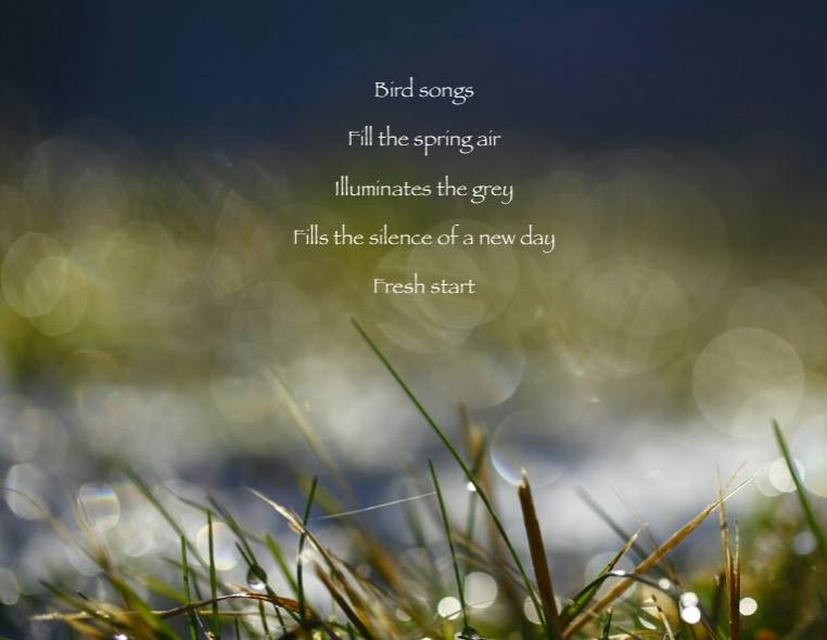 Becca poem.jpg