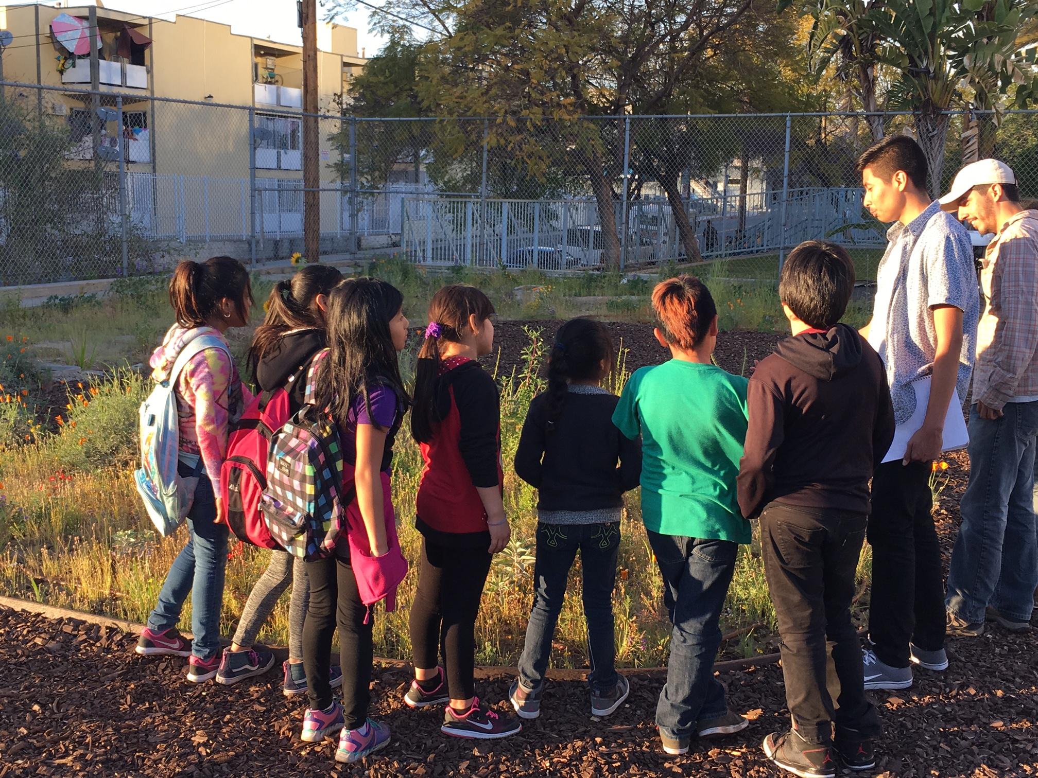 Schoolyard Habitat - A collaborative effort between Los Angeles Audubon Society College Fellows, restoration ecologists, ELP students, and community volunteers implement schoolyard habitats at urban core schools near downtown Los Angeles.