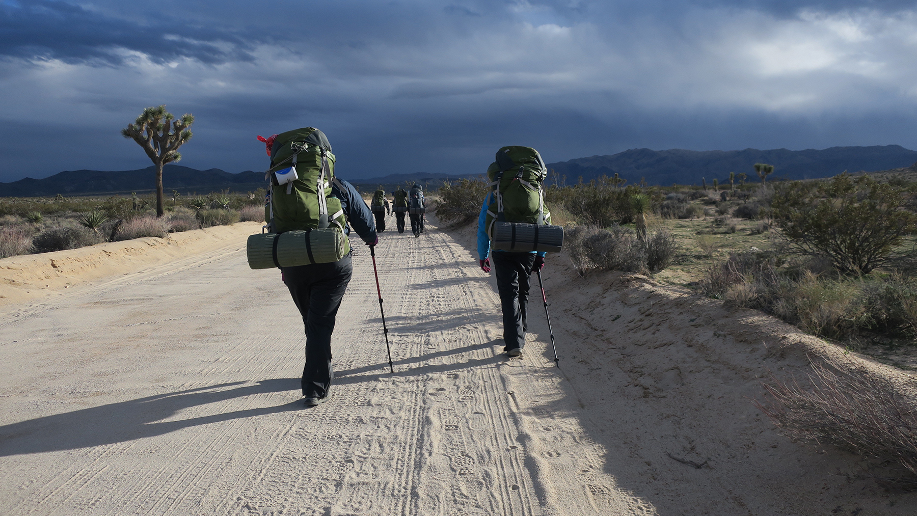 Outward Bound California instructors and Los Angeles Audubon backpacking group, hiking to the first camping site.