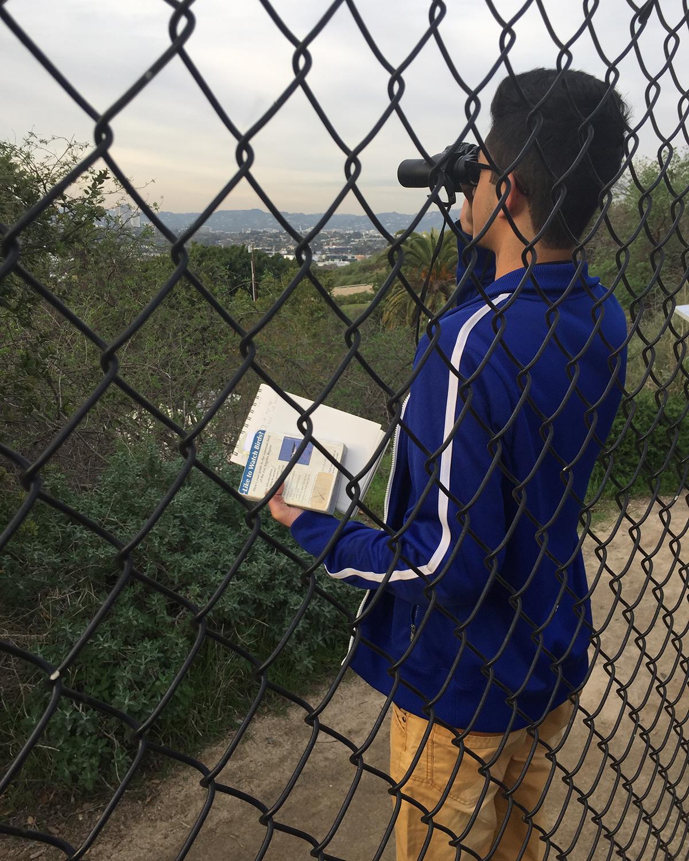 Ahmad conducts a bird survey at Baldwin Hills Scenic Overlook.