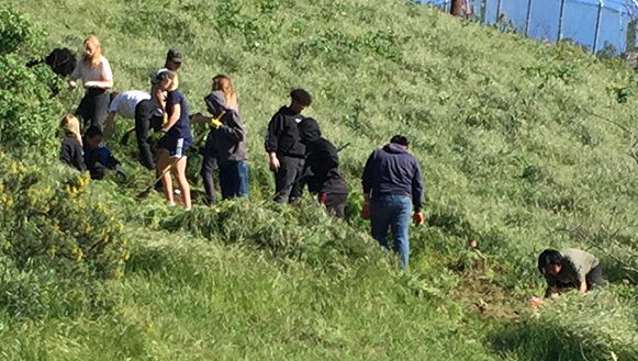 Students at work on the hillside adjacent to the greenhouse at Baldwin Hills Scenic Overlook.