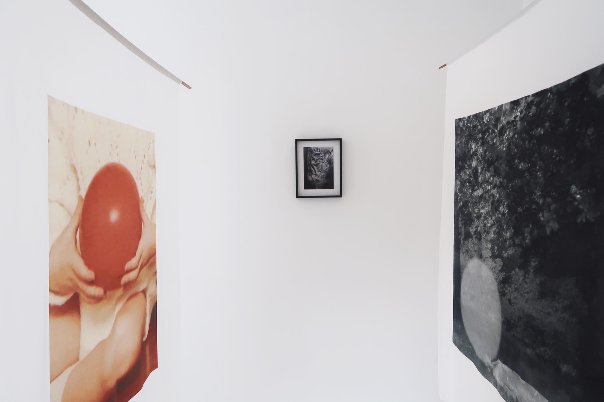 nina nw gallery 11.jpg