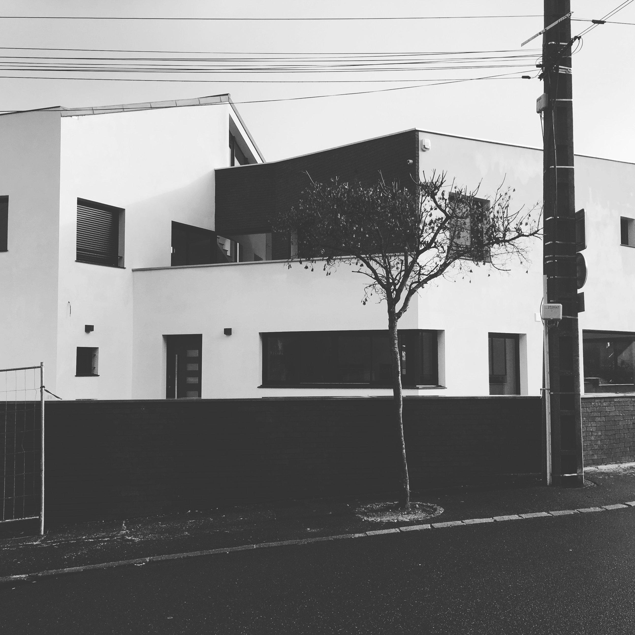 20_facade rue 2_MeKA.jpg