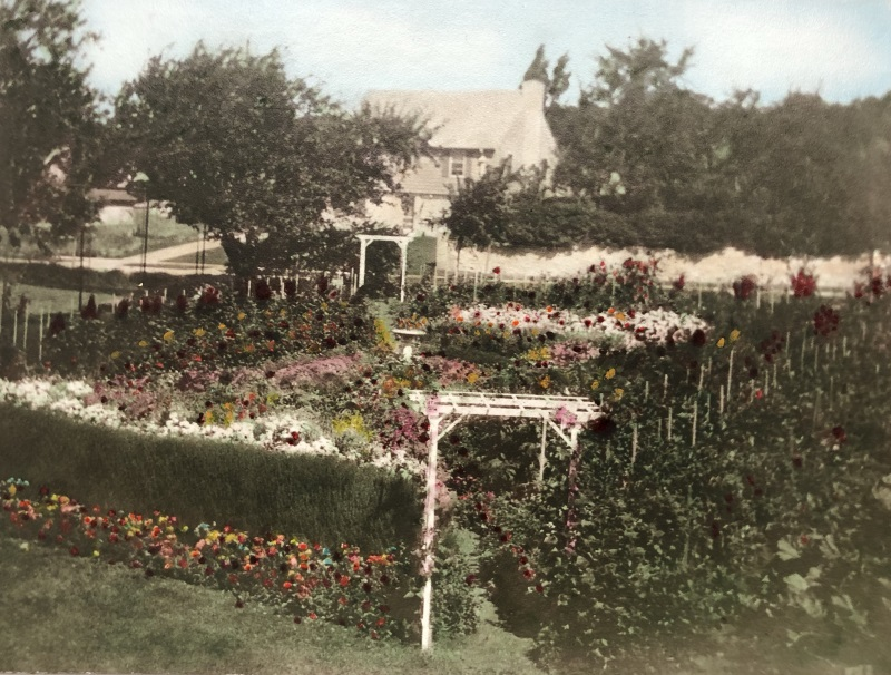 Undated and hand-colored historical image of the gardens