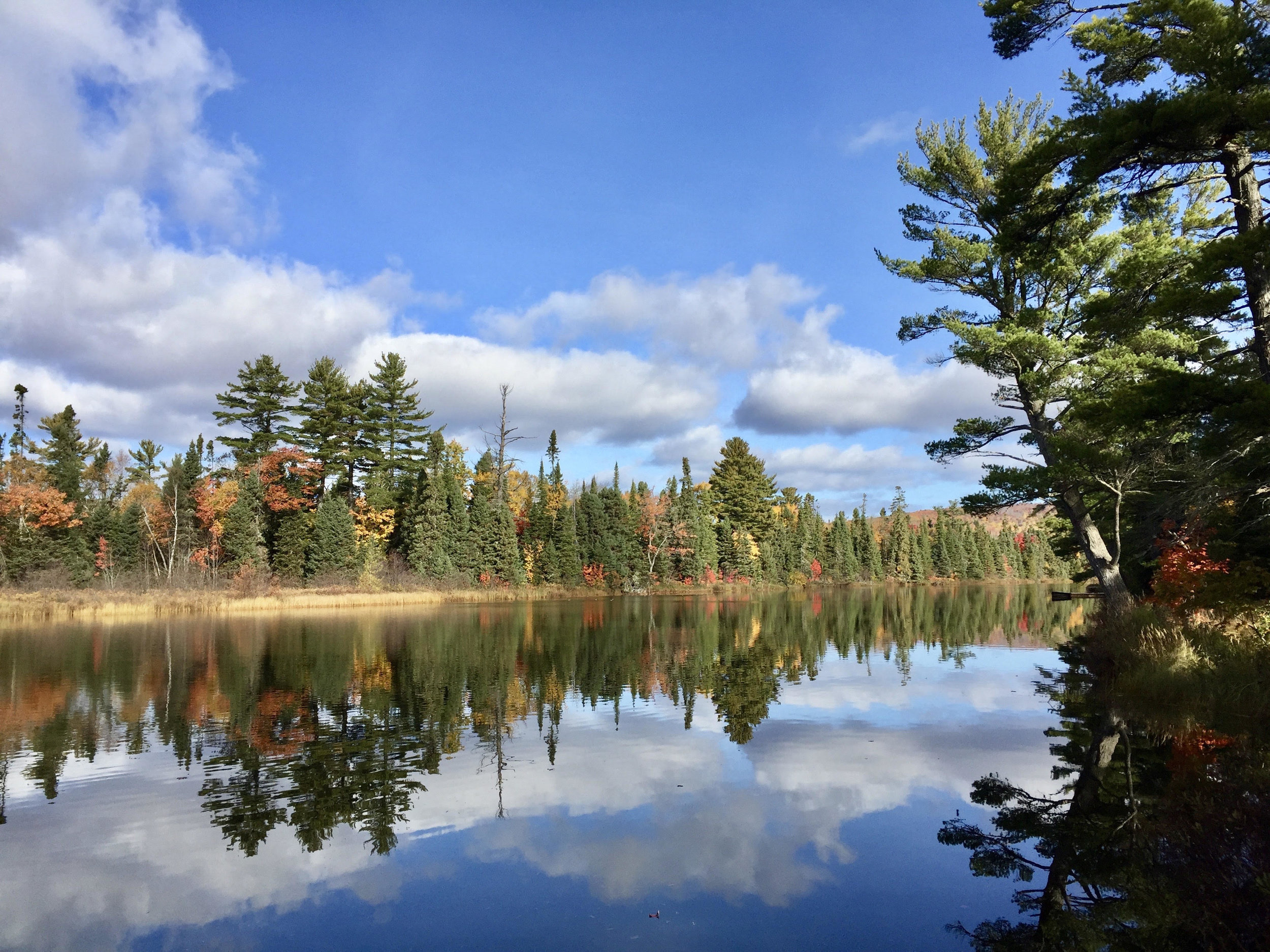 PRESERVES - Houghton Keweenaw Conservation District Preserves are open to the public for day use year round for compatible recreation, education and research activities. Please enjoy and be a good steward of these special natural areas.