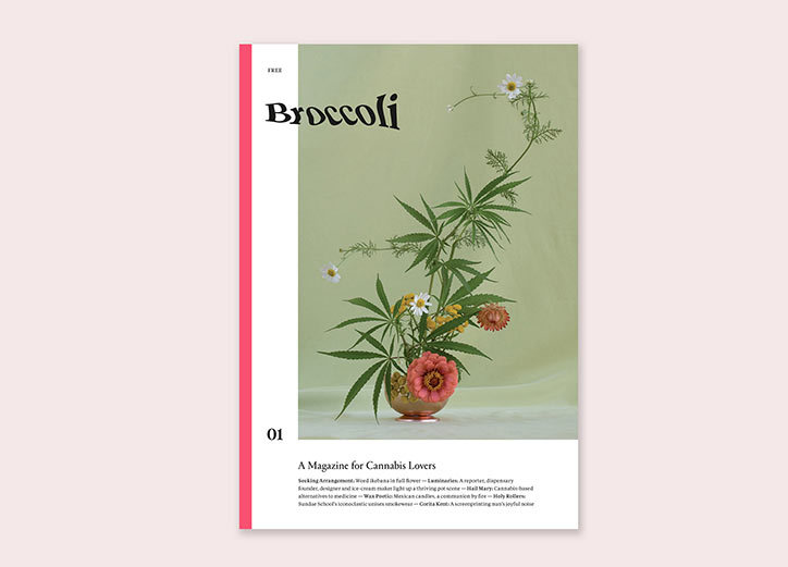 Broccoli-publication-itsnicethat8.jpg