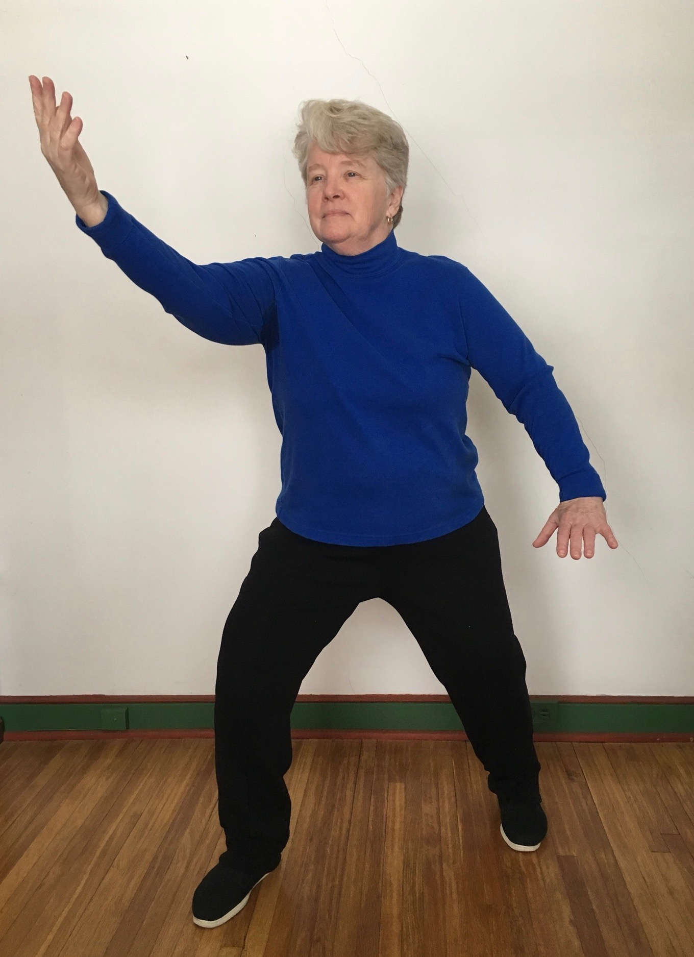 Mary Christianson demonstrates Wu Style Tai Chi Part the Wild Horse's Mane.