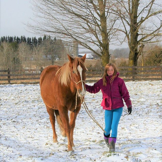 Winter Woolies are great for all outdoor activities! 🐎❄️ Available in womens, mens, and kids sizes! ⭐️ . . . #winterapparel #activeapparel #activewear #horsebackriding #horseapparel #ridingapparel #wintersports #thermalwear #thermalcore #warmleggings #skipants #snowboarding #skiing #skating #winterwoolies