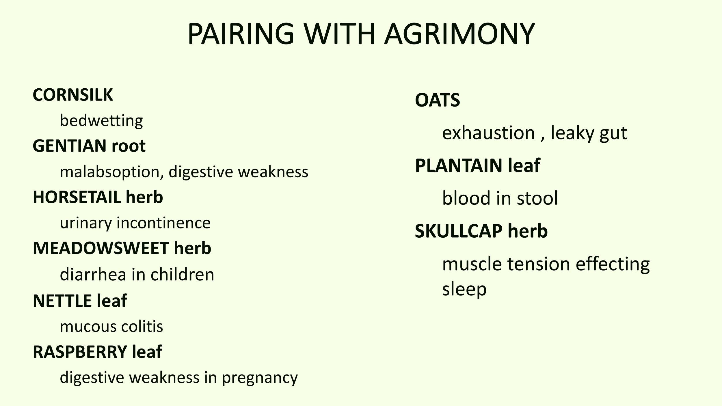 Agrimony_MM (backup)-6.jpg