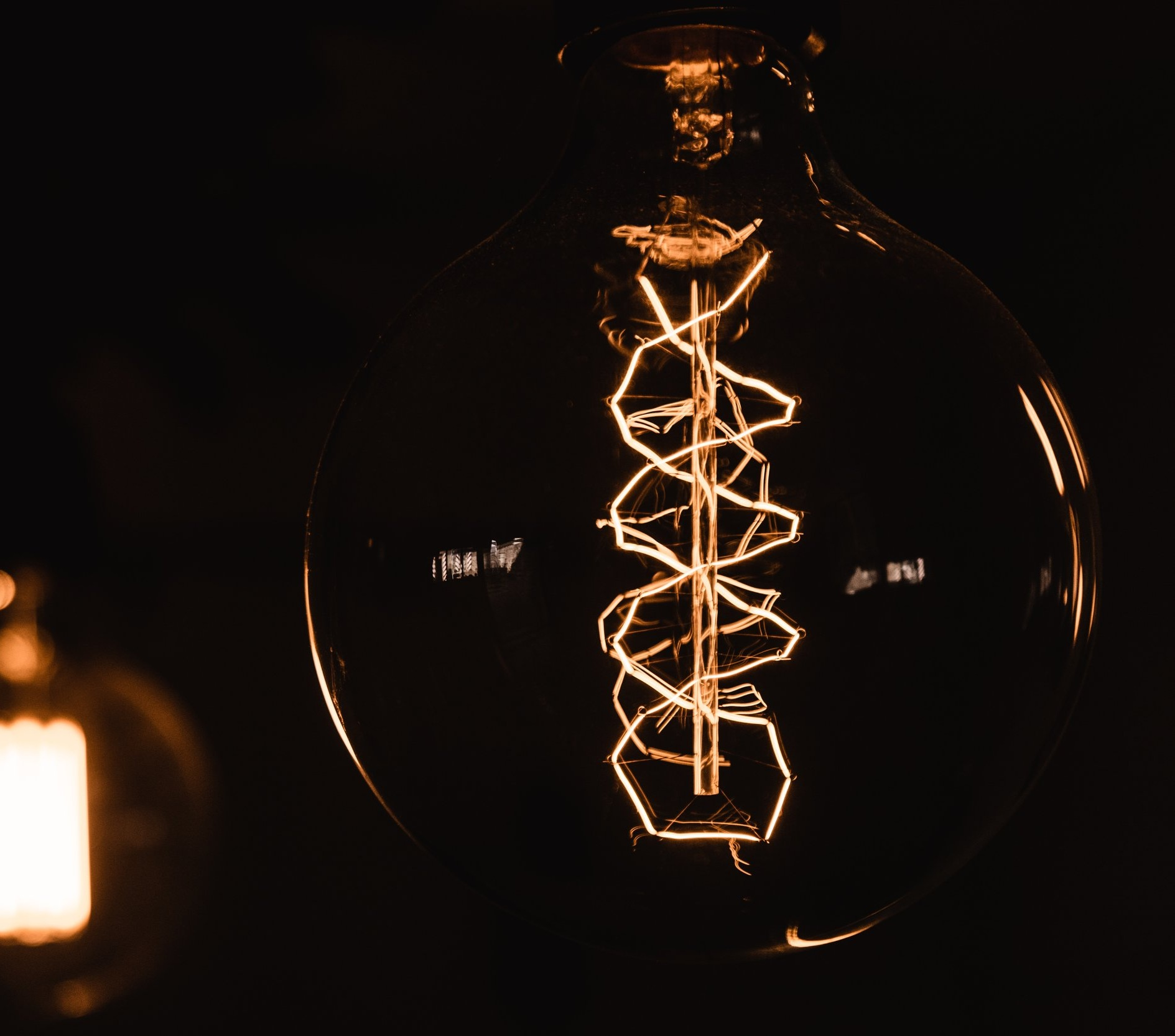 DNA light bulb