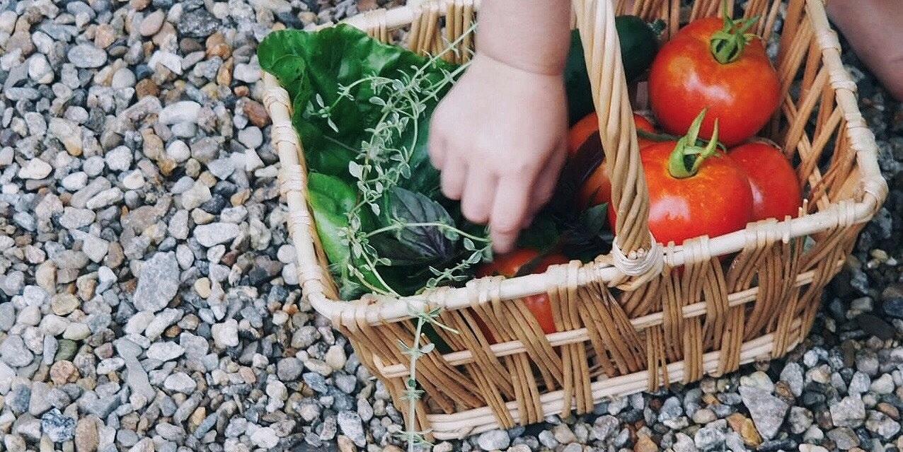hand-crop.jpg