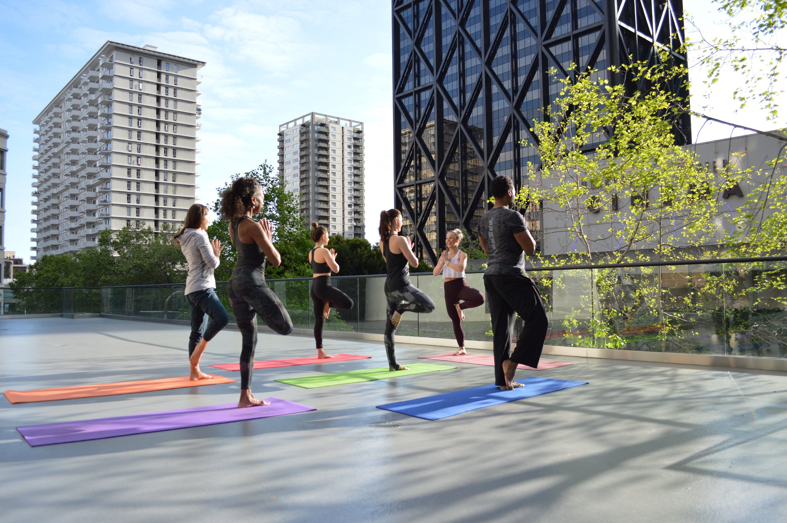 PRIVATE + SMALL GROUP - PERSONALIZED SMALL GROUP OR PRIVATE YOGA SESSIONS PROVIDING THE YOGA EXPERIENCE OF YOUR DREAMS