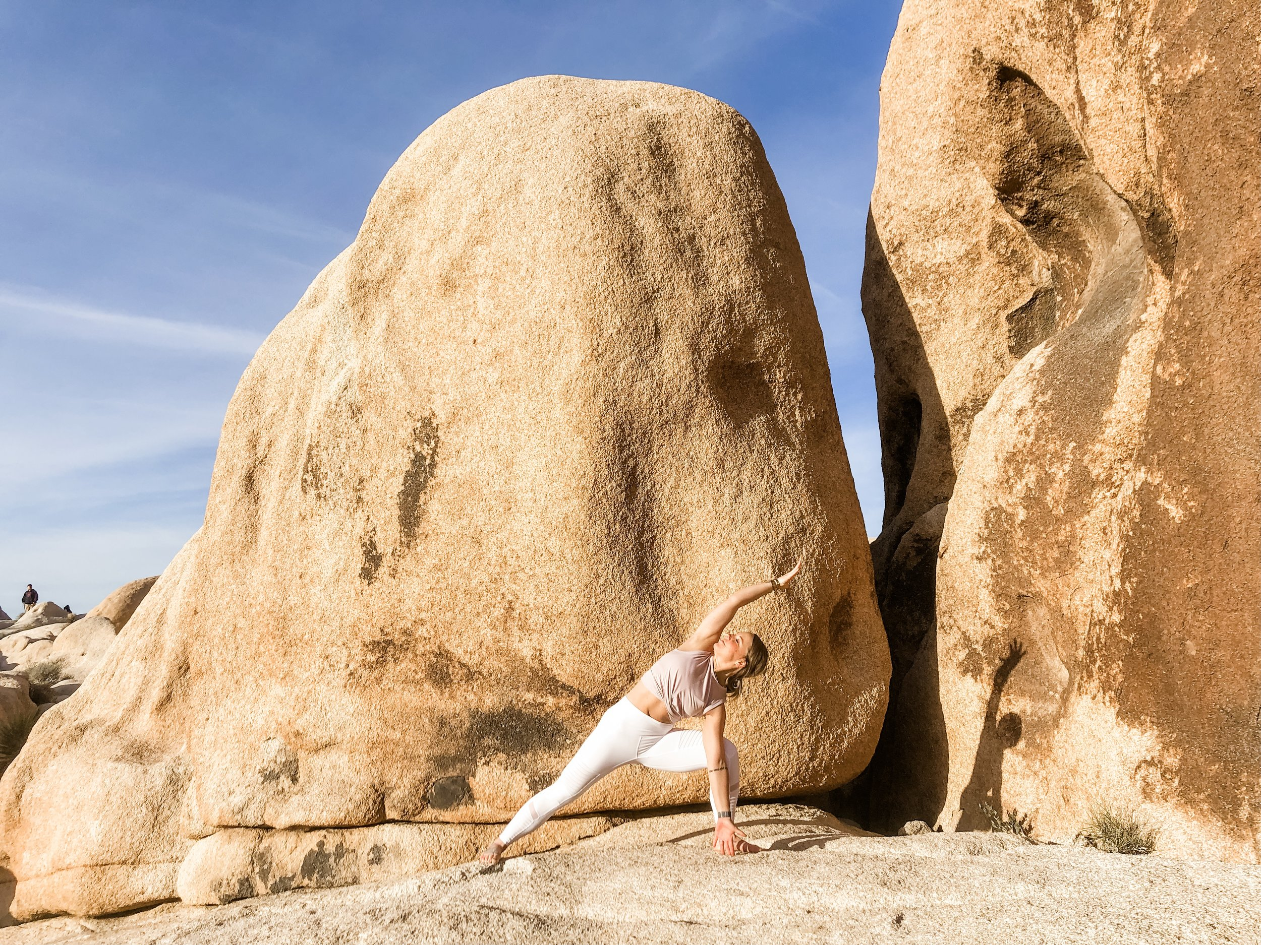 Yoga by Paige Joshua Tree Warrior.JPG