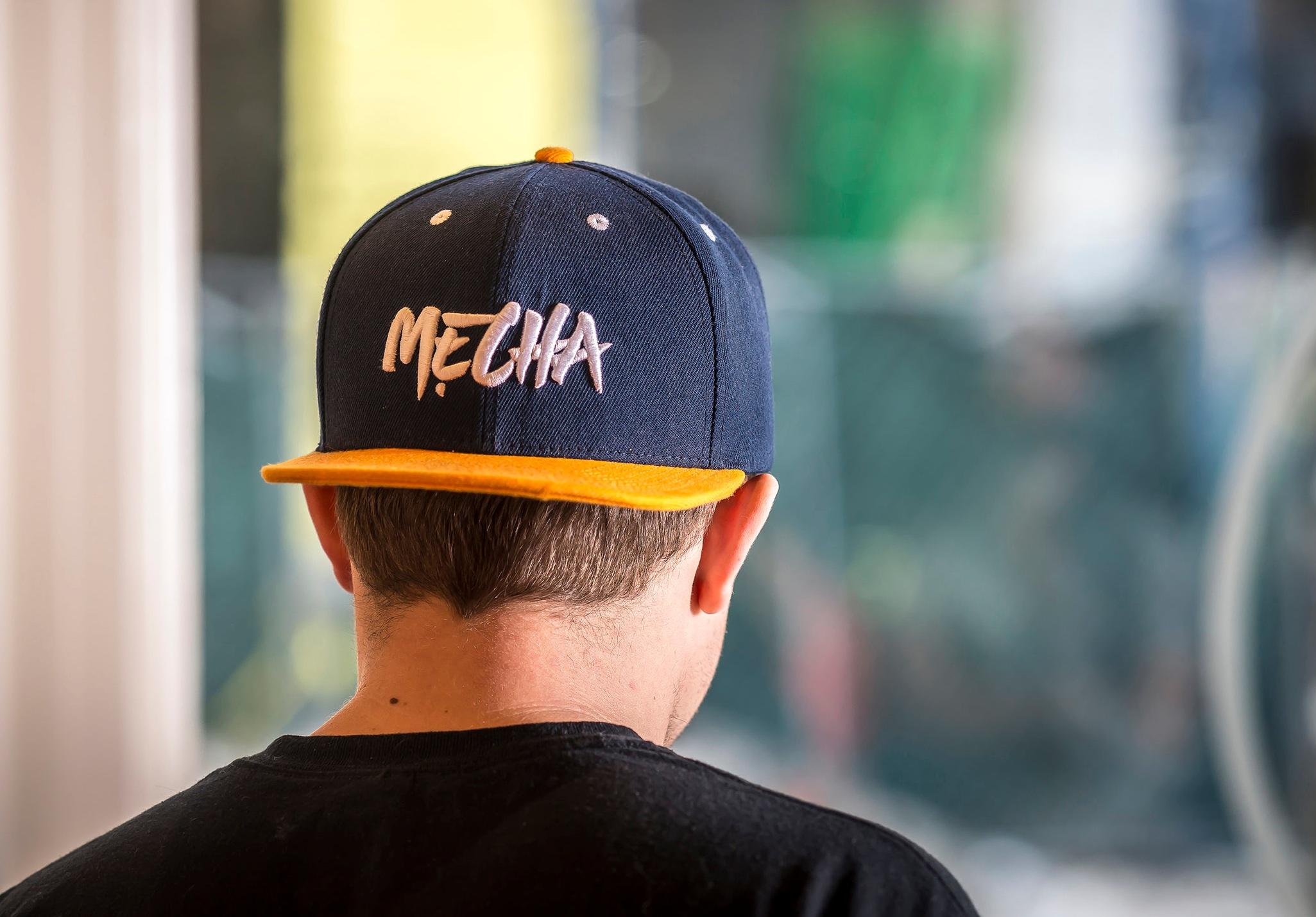 mecha_II_NF_213.jpg