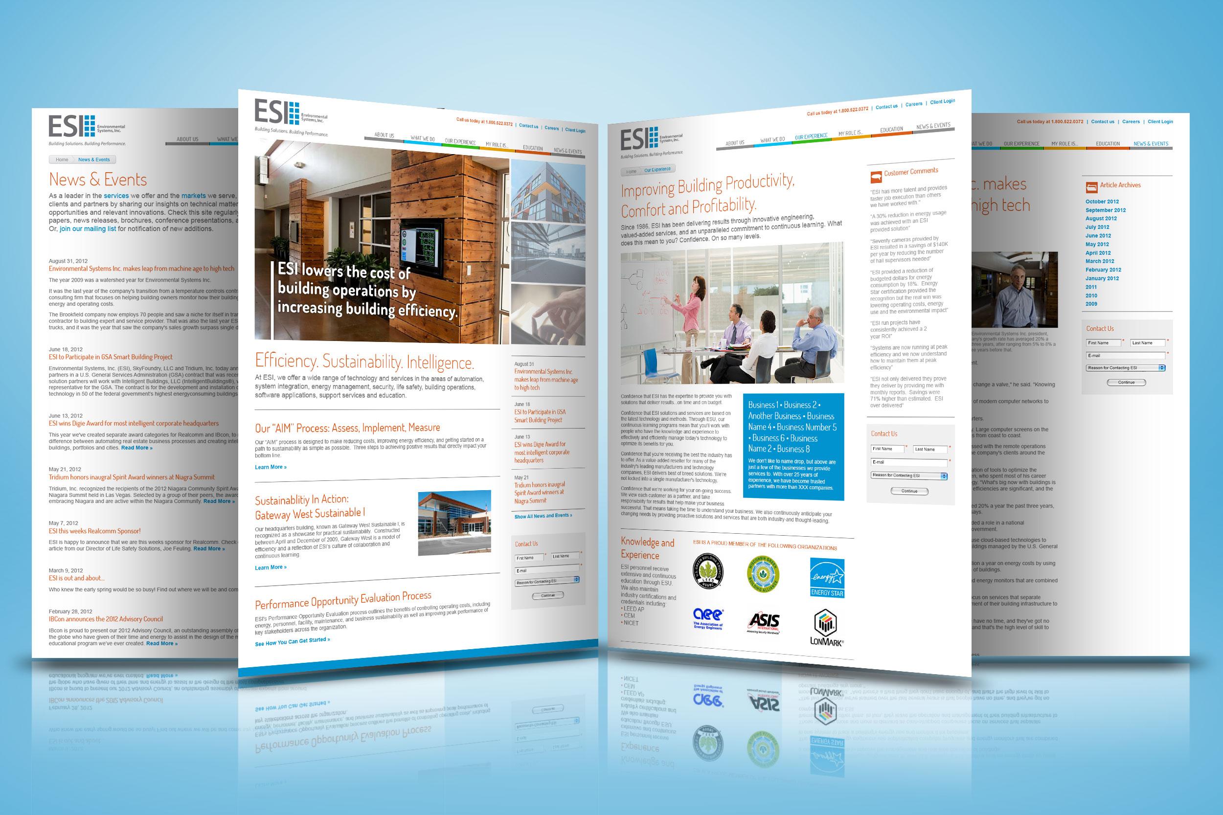 ESI Website Redesign (2012)