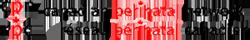 Canadian Perinatal Network